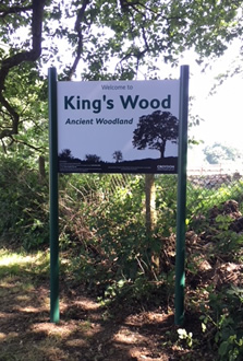 King's Wood Sign